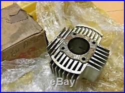 Suzuki 2strokes A80 TS75 Cylinder Block NOS Genuine Japan P/N 11210-22500